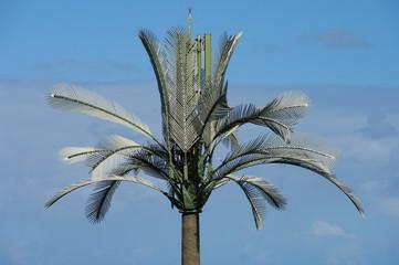 Pylône palmier 2