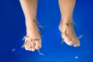 Fish spa feet pedicure skin care treatment with the fish rufa ga