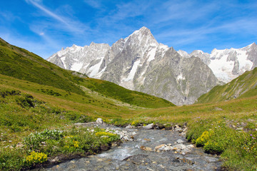 Alpine stream with Grand Jorasses glacier