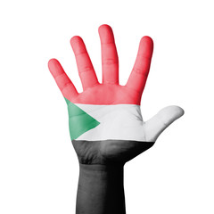 Open hand raised, Sudan flag painted