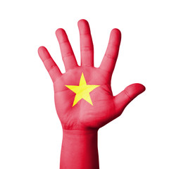 Open hand raised, Vietnam flag painted