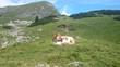 canvas print picture - Alpen