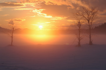 misty romantic winter sunset