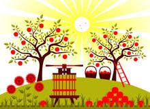 Los cultivos de manzanas