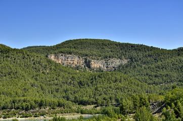 Montaña con muchos pinos y un lago en la parte inferior