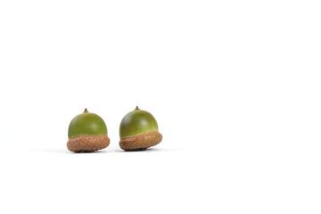 Zwei Eicheln