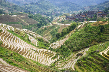 Longsheng Village Rice Terraces in China