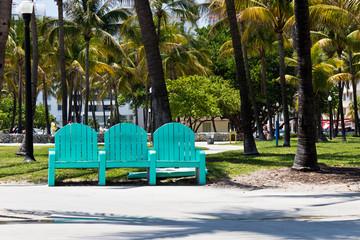 Park bench among the palm trees in Miami, Florida