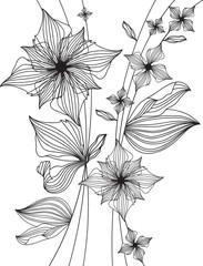 floral design, outline drawing