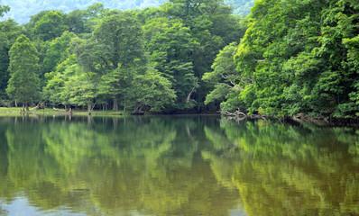 静寂の湖 西ノ湖