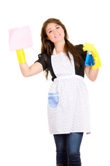 Beautiful young housewife cleaning