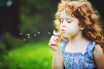 Beautiful little curly girl blowing dandelion, horizontal shot.