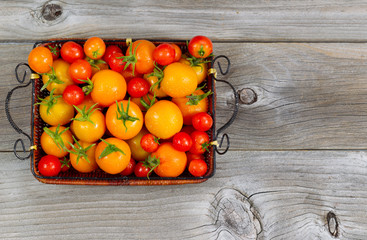 Fresh Whole Tomatoes in Basket