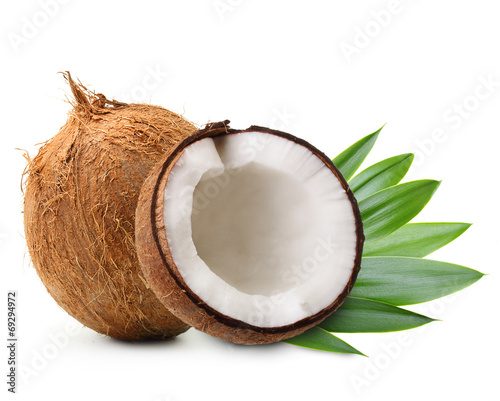 Coconut with palm leaves - 69294972