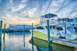 View of Sportfishing boats at Marina - 69295338