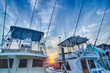 View of Sportfishing boats at Marina - 69295367