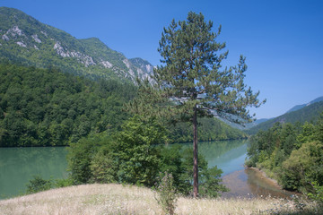 Fluss Drina in Serbien