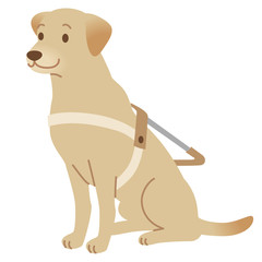 盲導犬 補助犬