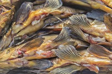smoked fish fins