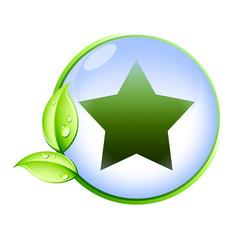 Icone bio : étoile
