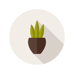 Pot with three leaves  flat icon