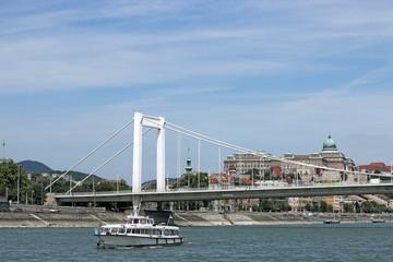 Elisabeth bridge on Danube river Budapest