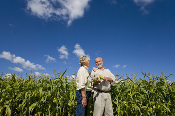 Mature couple by corn field, smiling at each other, low angle view