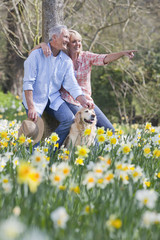Smiling senior couple with dog pointing in sunny daffodil field