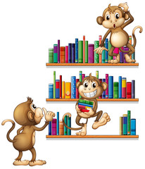 Monkeys and books