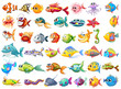 Fish collection - 69310326