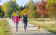 Walkingrunde im Herbst