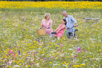 Grandparents and granddaughters with bicycles among wildflowers in sunny meadow