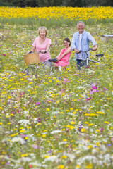 Portrait of smiling grandparents with granddaughter among wildflowers in sunny meadow