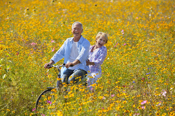 Smiling couple riding bicycle among wildflowers in sunny meadow