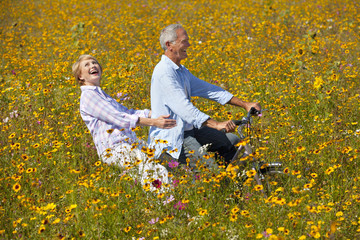 Laughing couple riding bicycle among wildflowers in sunny meadow