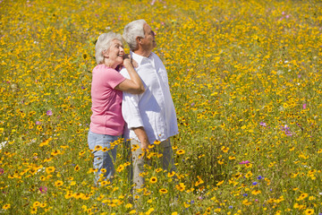 Smiling couple hugging among wildflowers in sunny meadow