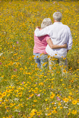 Couple hugging among wildflowers in sunny meadow