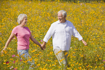 Smiling couple holding hands and walking among wildflowers in sunny meadow