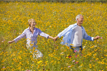 Laughing couple holding hands and walking among wildflowers in sunny meadow