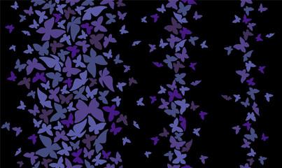 蝶のパターン