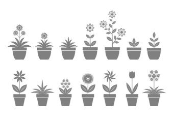 Grey flower icons on white background