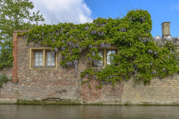 River Tour at Cambridge University