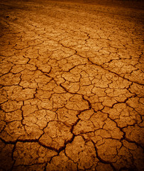 cracking dry earth