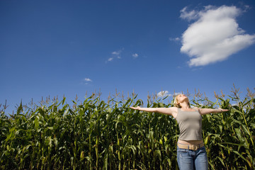 Young woman looking up with arms outstretched by corn field, low angle view