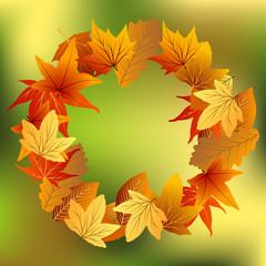 осенние листья на зеленом фоне