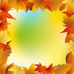 рамка из осенних листьев с цветным фоном