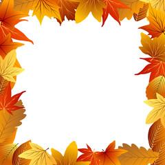 рамка из цветных осенних листьев с белым фоном