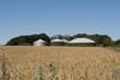 Leinwandbild Motiv Biogasanlage