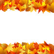 Постер, плакат: осенняя рамка из цветных листьев