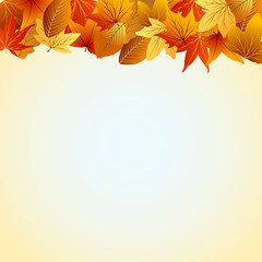 осенний желто-голубой фон с цветными листьями